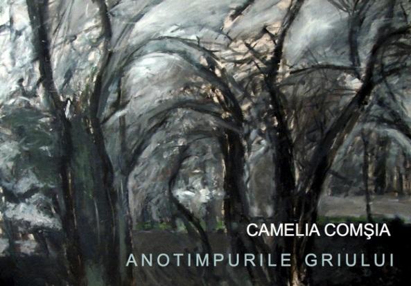 Camelia Comsia -invitatie-anotimpurile