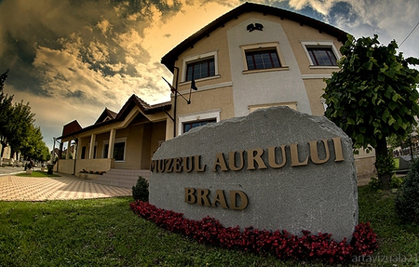 072 Brad-Muz aur Foto artavizuala21