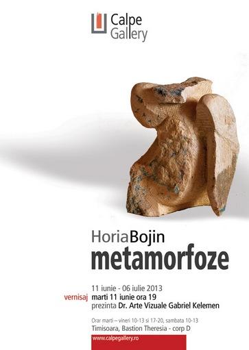 Horia Bojin - Metamorfoze