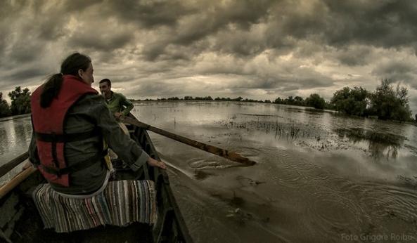 15 Partizani 2013-Foto Grigore Roibu