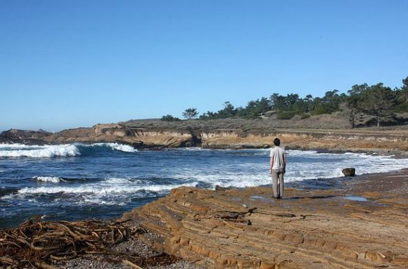 Weston Beach (Sursa foto Wikipedia)