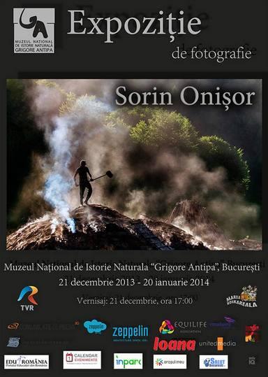 Sorin Onisor