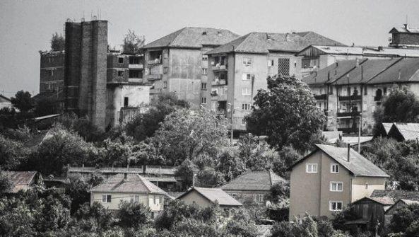 Mențiune: Dorin Luca - Natura își recucerește teritoriul(Colegiul Național Iancu de Hunedoara)